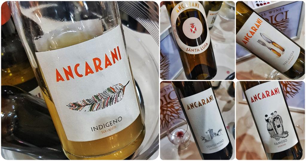 Anacarni by Papillamonella Live Wine 2019