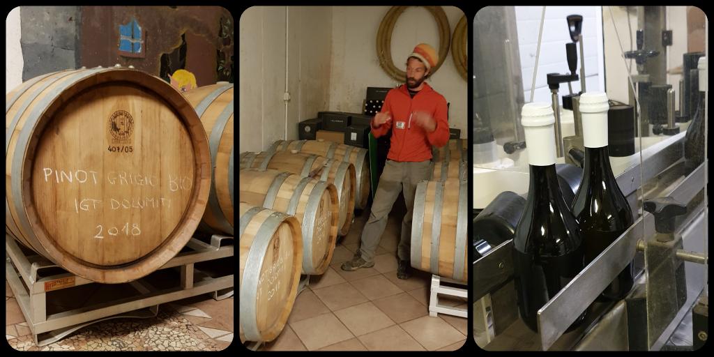 villa persani vitigni resistente e cantina