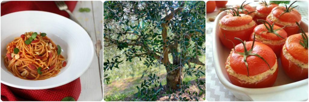 Cinque ricette con protagonista l'olio di oliva extravergine